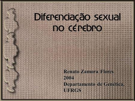 Diferenciação sexual no cérebro