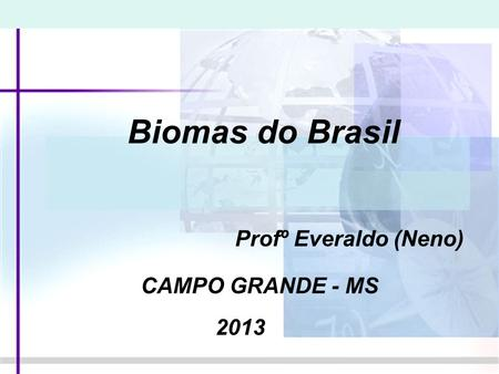 Biomas do Brasil Profº Everaldo (Neno) CAMPO GRANDE - MS 2013.