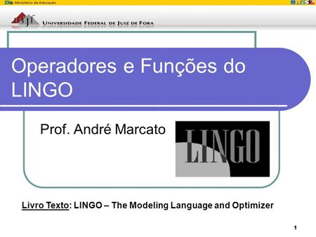 1 Operadores e Funções do LINGO Prof. André Marcato Livro Texto: LINGO – The Modeling Language and Optimizer.
