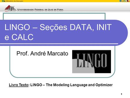 1 LINGO – Seções DATA, INIT e CALC Prof. André Marcato Livro Texto: LINGO – The Modeling Language and Optimizer.