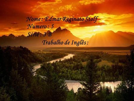 Nome : Edmar Reginato Stolf
