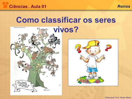 Como classificar os seres vivos?