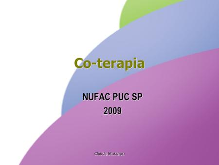 Co-terapia NUFAC PUC SP 2009 Claudia Bruscagin.