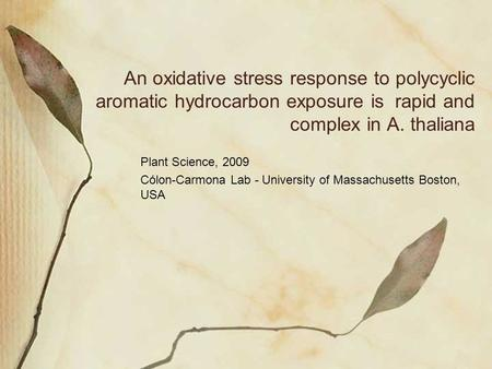 An oxidative stress response to polycyclic aromatic hydrocarbon exposure is rapid and complex in A. thaliana Plant Science, 2009 Cólon-Carmona Lab - University.