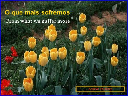O que mais sofremos ALBINO TEIXEIRA From what we suffer more.