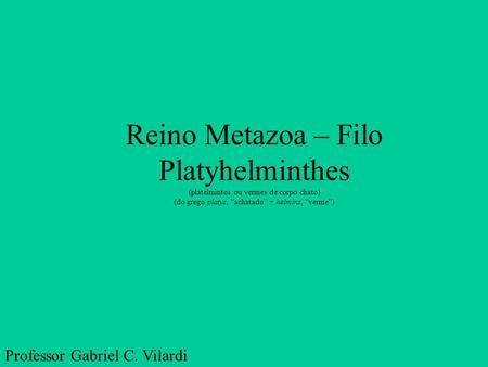 Reino Metazoa – Filo Platyhelminthes
