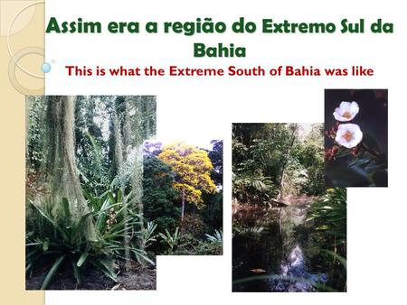 Assim era a região do Extremo Sul da Bahia Assim era a região do Extremo Sul da Bahia This is what the Extreme South of Bahia was like.