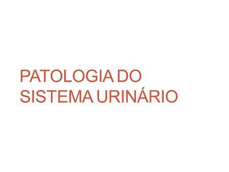 PATOLOGIA DO SISTEMA URINÁRIO