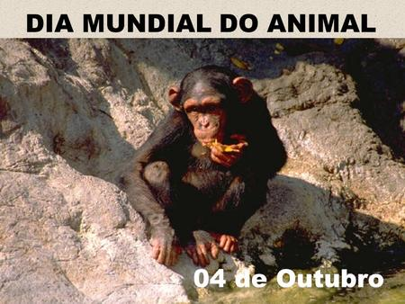 DIA MUNDIAL DO ANIMAL 04 de Outubro.