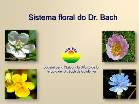 Sistema floral do Dr. Bach