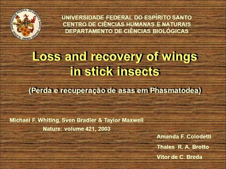 UNIVERSIDADE FEDERAL DO ESPÍRITO SANTO CENTRO DE CIÊNCIAS HUMANAS E NATURAIS DEPARTAMENTO DE CIÊNCIAS BIOLÓGICAS Loss and recovery of wings in stick insects.