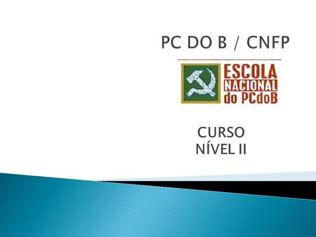 PC DO B / CNFP CURSO NÍVEL II.