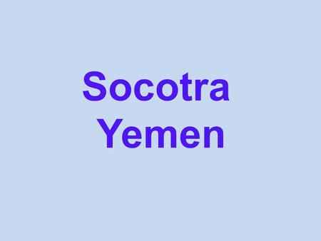 Socotra Yemen. Socotra is a small island belonging to Yemen, made up of 4 islands in the Indian Ocean near Somalia in Africa. The archipelago gathers.