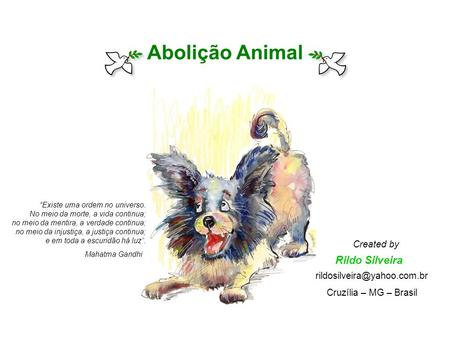 Abolição Animal Rildo Silveira Created by