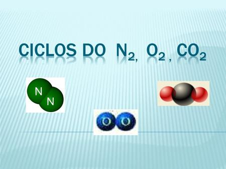 CICLOS DO N2, O2 , CO2.
