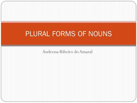 Andressa Ribeiro do Amaral PLURAL FORMS OF NOUNS.