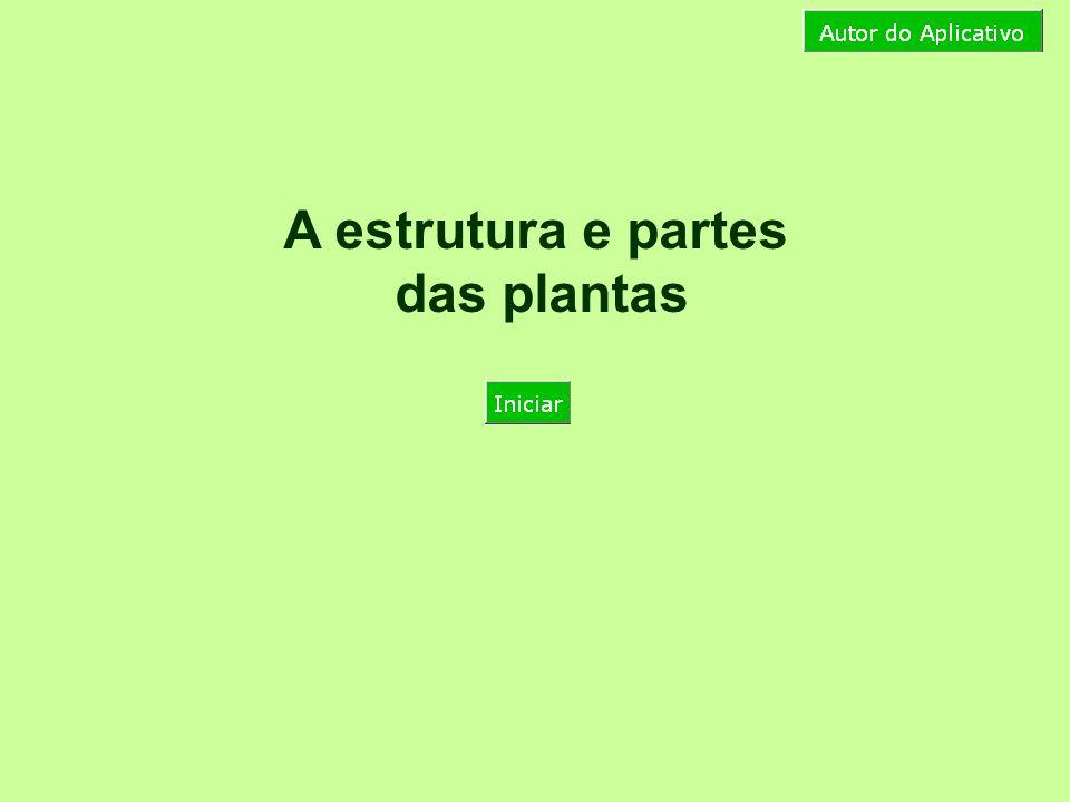 A estrutura e partes das plantas A planta é composta de raiz, caule, folha, flor, fruto e semente, que precisam ter todas as suas necessidades satisfeitas.