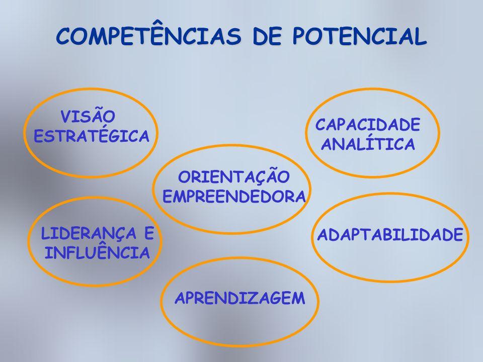 DESENVOLVIMENTO PROFISSIONAL Cenário atual Identificado pelos instrumentos de avaliação que a empresa têm: Avaliação de Performance; Avaliação de Excelência Gerencial; Avaliação Compartilhada e Avaliação de Potencial GAP Aonde que a Organização quer chegar Cenário futuro