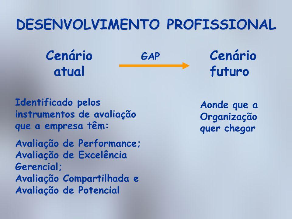 DESENVOLVIMENTO PROFISSIONAL A partir do cruzamento do gap existente entre o cenário atual e o futuro definimos os Planos de Ação Individual.