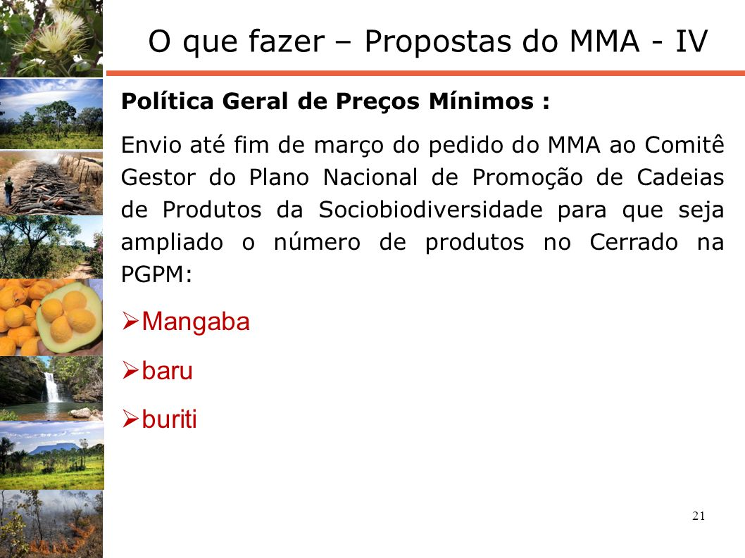 22 O que fazer – Propostas do MMA - V Retomada do Programa Cerrado Sustentável: Alteração da CONACER para a inclusão de novos órgãos (SFB, ICMBio), e reconfiguração interna.