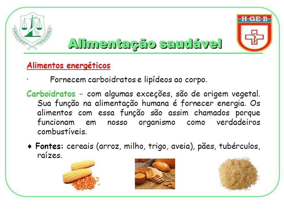 Alimentação saudável Alimentos energéticos extras Lipídeos - possuem alto valor energético e transportam as vitaminas lipossolúveis (A, D, E, K), protegendo os órgãos vitais e o organismo contra a perda excessiva de calor.