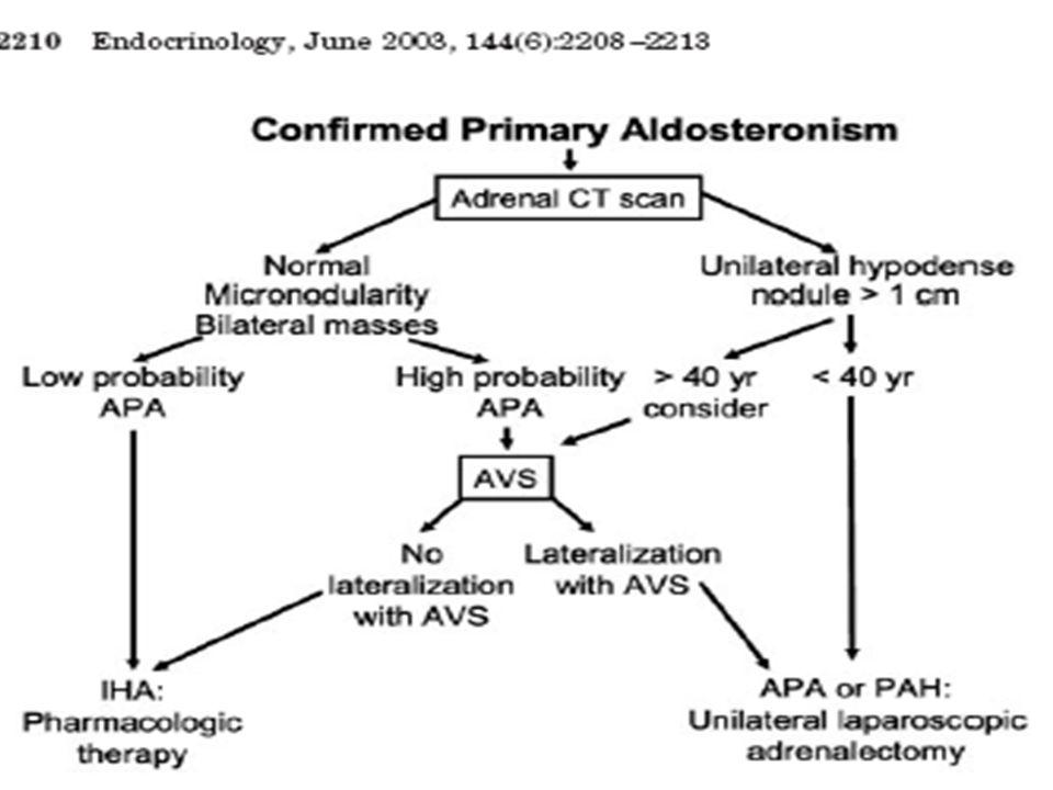 Fístula ArterioVenosa Renal FAV em Artéria PolarEmbolização