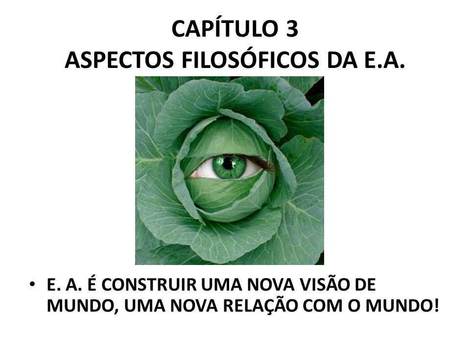 ASPECTOS FILOSÓFICOS DA E.A.