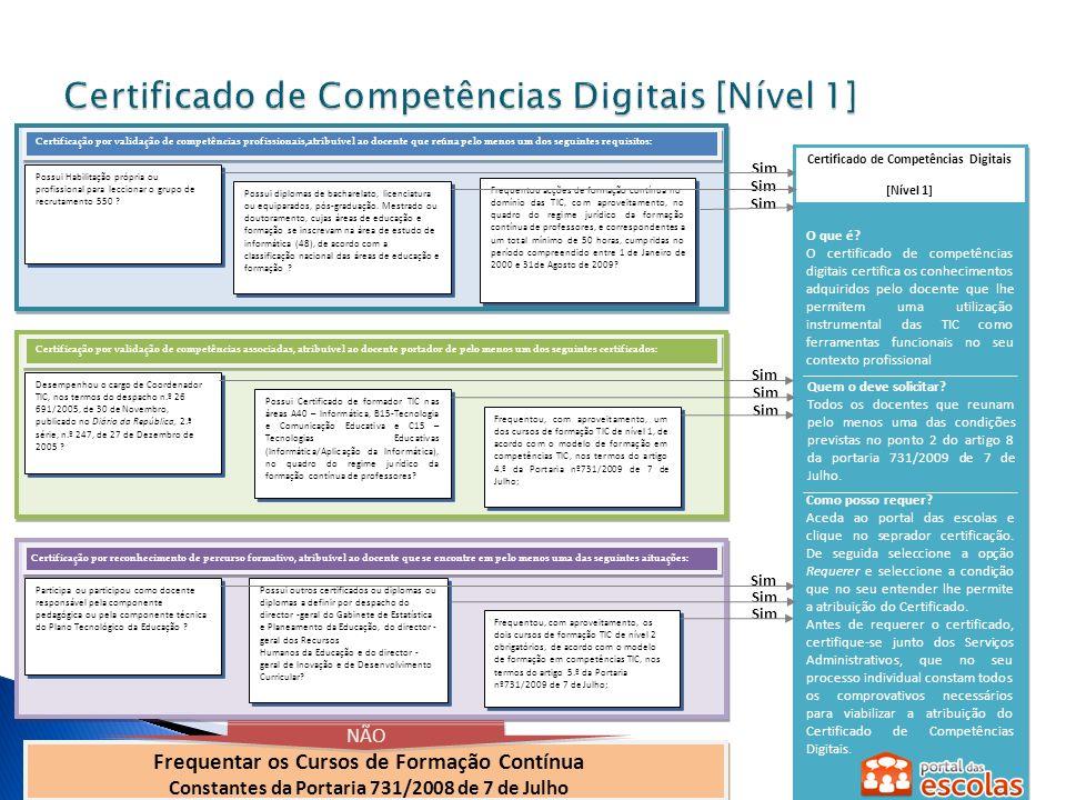 Certificado de Competências Pedagógicas e Profissionais com TIC [Nível 2] O que é.