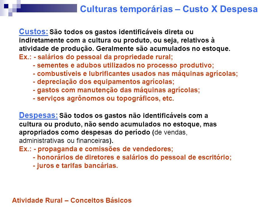 Fases da cultura temporária 1) Formação: - Custos com plantio, adubação, sementes, calcário, mão-de- obra, irrigação, produtos químicos (ex.: fungicidas), depreciação, etc.