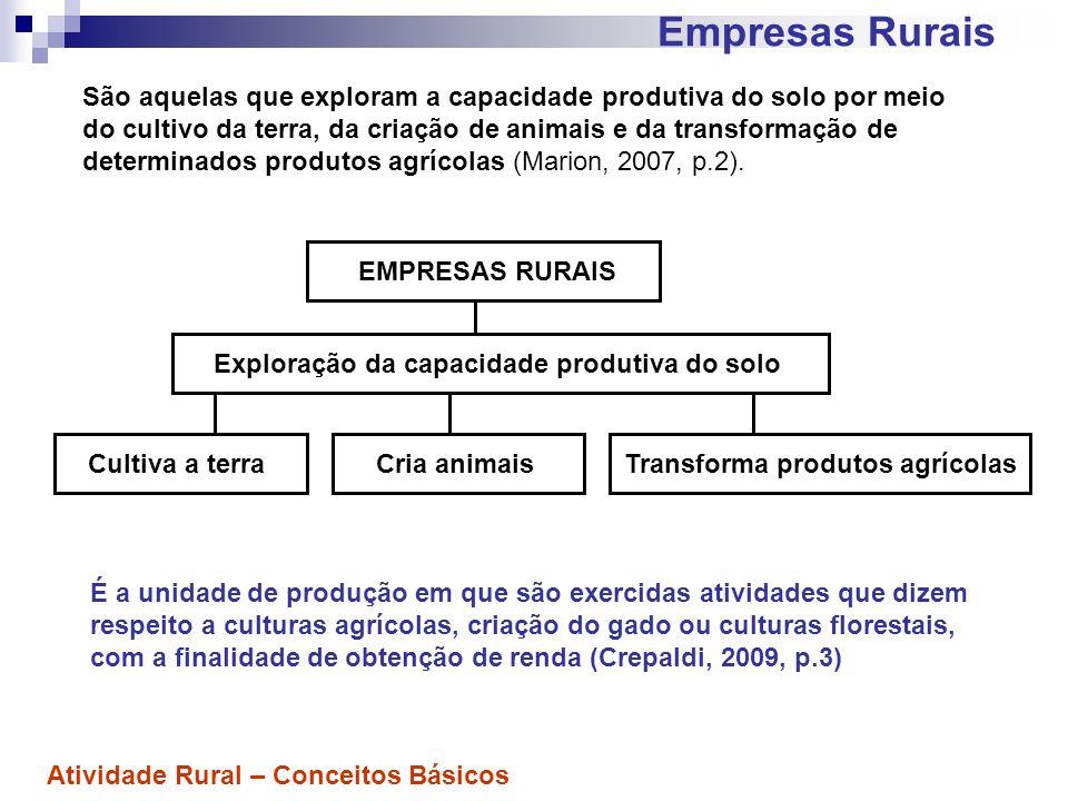 Campo de atividade das Empresas Rurais São 3 (três), basicamente: 1) Atividade Agrícola; 2) Atividade Zootécnica; 3) Atividade Agroindustrial.