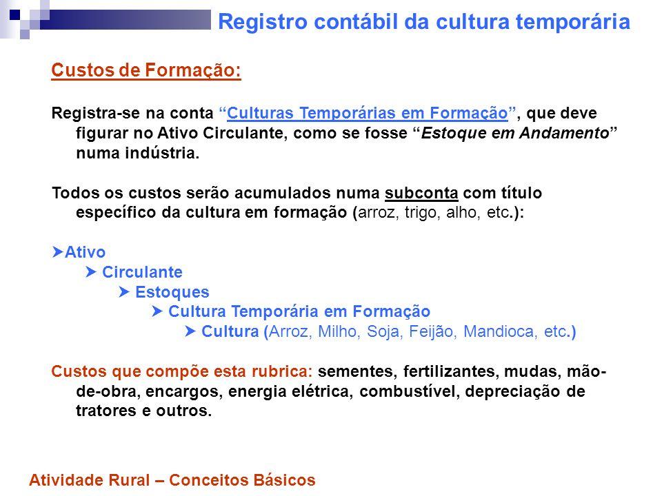 Registro contábil da cultura temporária Custos da Colheita: Também deverão ser acumulados na conta Culturas Temporárias em Formação.