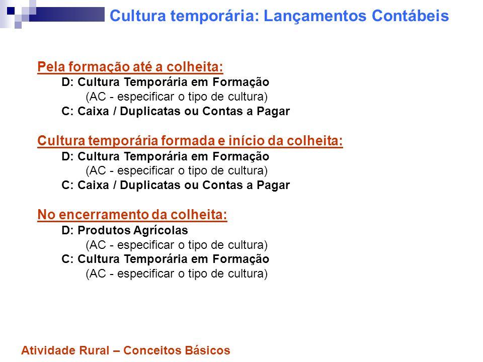 Cultura temporária: Lançamentos Contábeis Pela venda do produto agrícola: D: Caixa / Duplicatas ou Contas a Receber C: Venda de Produtos Agrícolas (Receita - especificar o tipo de cultura) Pela baixa do produto vendido (do estoque): D: Custo dos Produtos Vendidos (Custos e Despesas - especificar o tipo de cultura) C: Produtos Agrícolas (AC - especificar o tipo de cultura) Atividade Rural – Conceitos Básicos