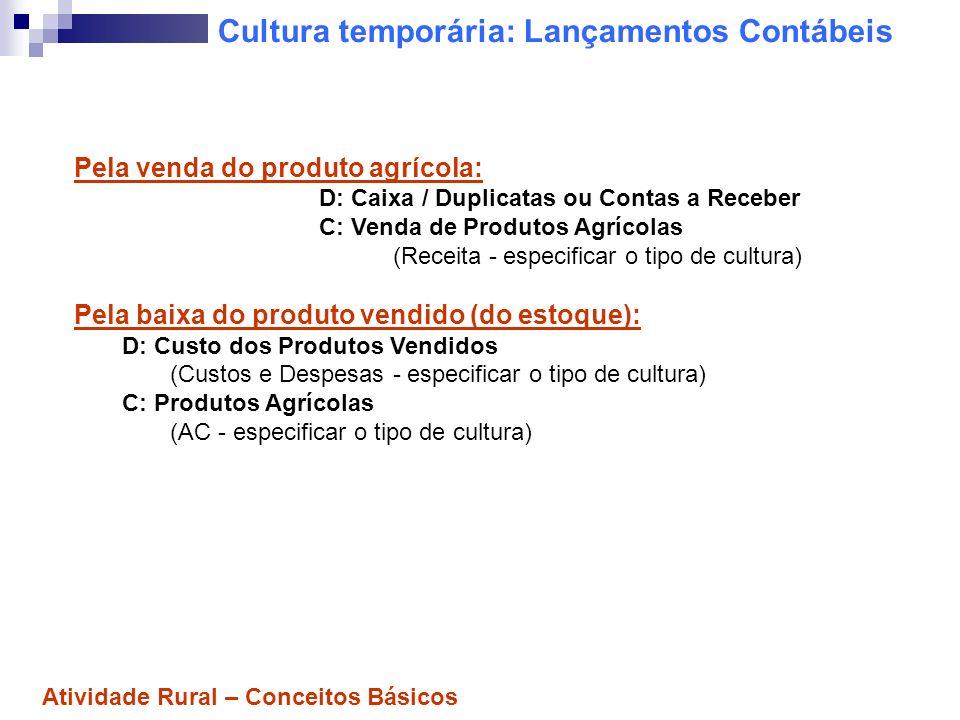 Resultado da Cultura temporária Para apurar o resultado (simplificadamente): Receita Bruta Venda de Produtos Agrícolas (-) Custo dos Produtos Vendidos = Lucro Bruto (-) Despesas Operacionais - Vendas - Administrativas -- Financeiras = Lucro Operacional Atividade Rural – Conceitos Básicos