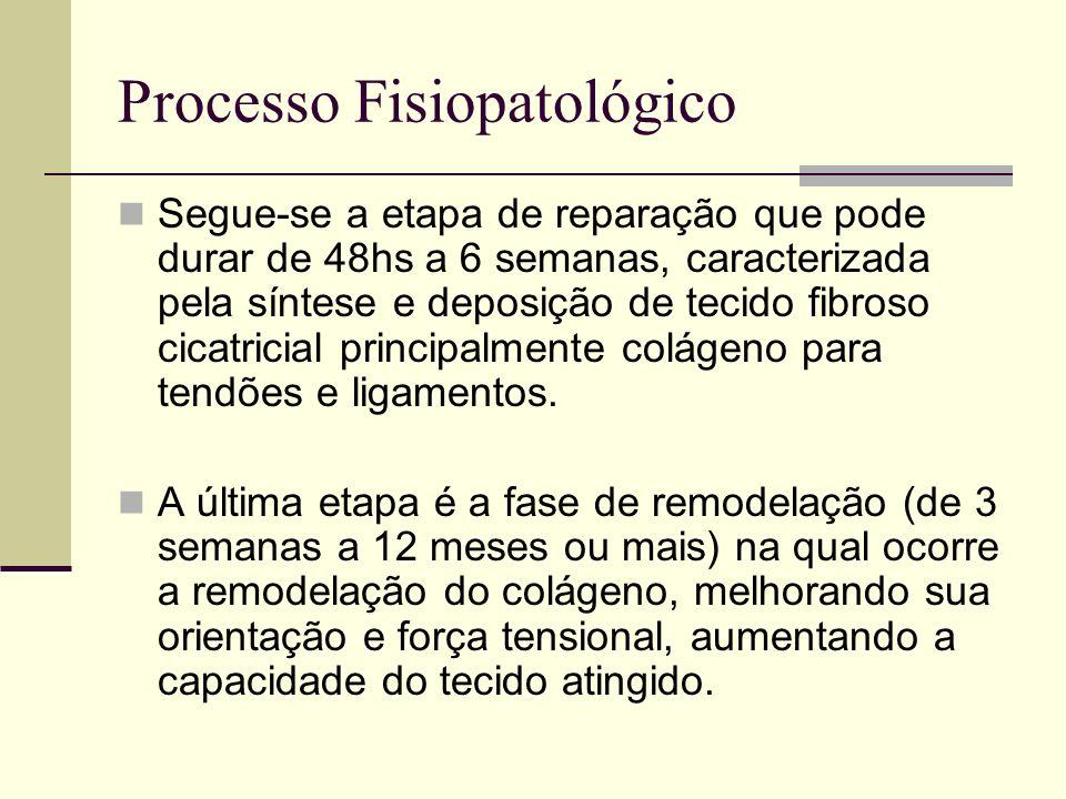 Processo Fisiopatológico Nesta fase, o músculo apresenta um encurtamento funcional por diminuição da elasticidade como conseqüência da cicatrização fibrosa, que deve ser corrigido.