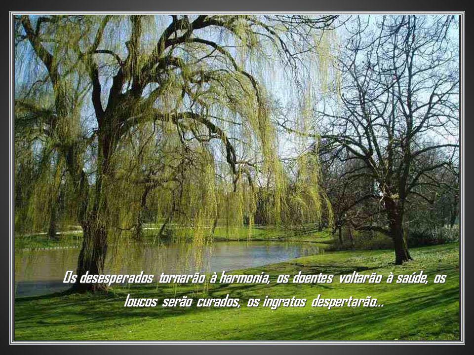 Os desesperados tornarão à harmonia, os doentes voltarão à saúde, os loucos serão curados, os ingratos despertarão...