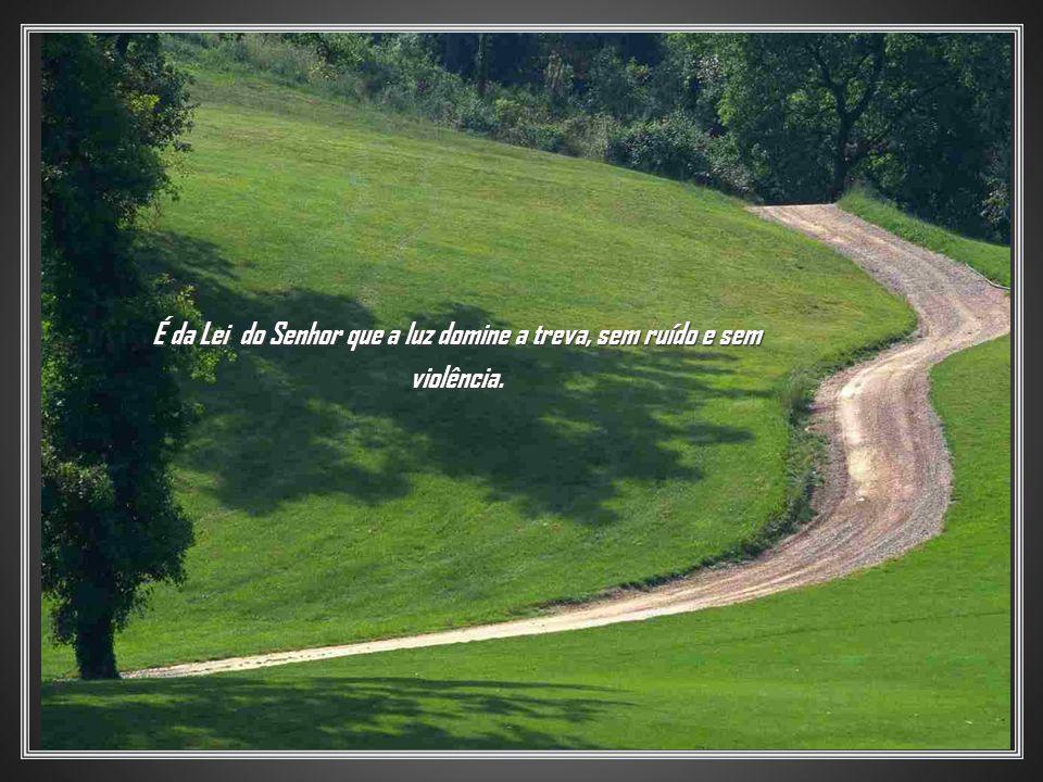 É da Lei do Senhor que a luz domine a treva, sem ruído e sem violência.