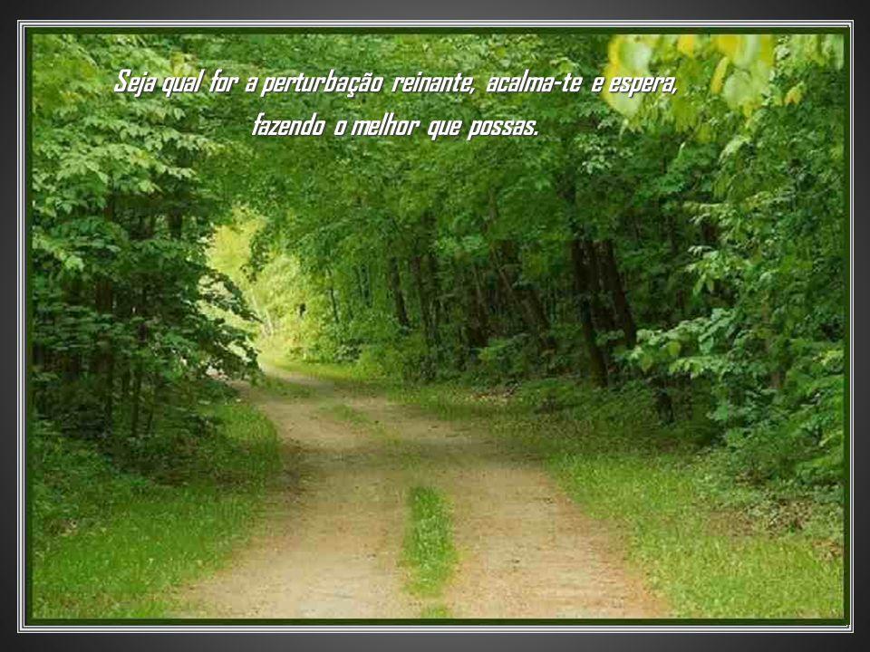 Seja qual for a perturbação reinante, acalma-te e espera, fazendo o melhor que possas.