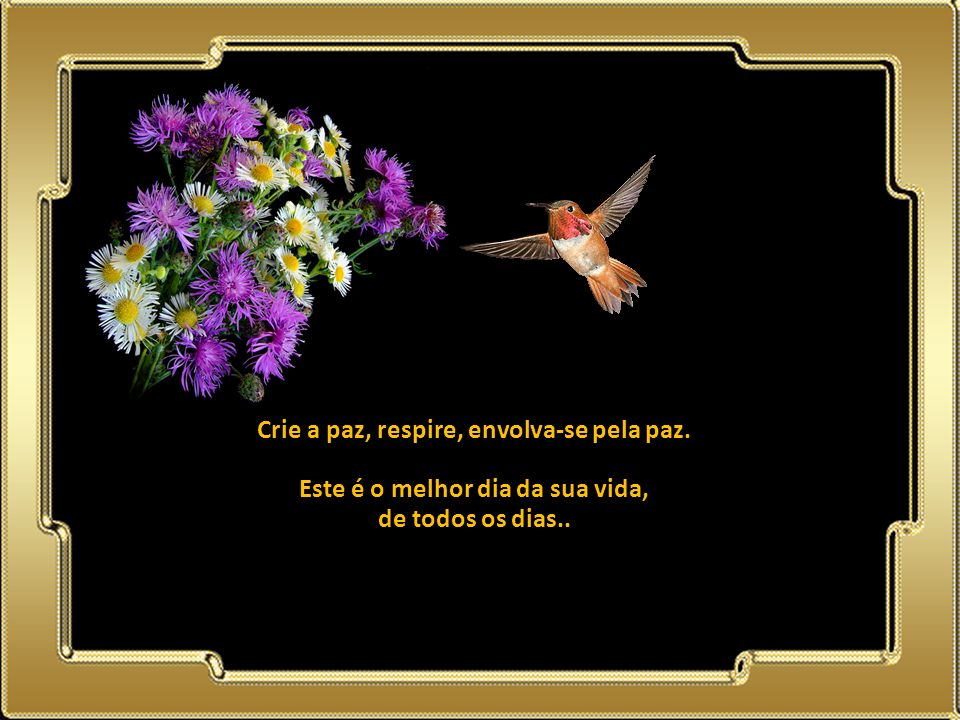 02.05.11 Crie a paz, respire, envolva-se pela paz.