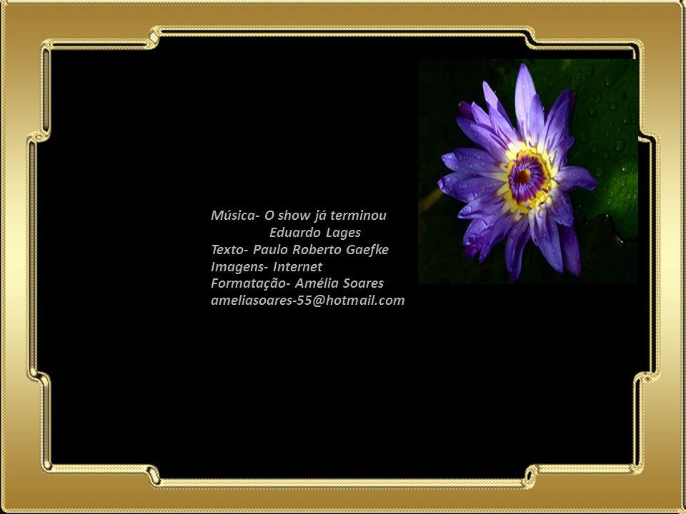 02.05.11 Música- O show já terminou Eduardo Lages Texto- Paulo Roberto Gaefke Imagens- Internet Formatação- Amélia Soares ameliasoares-55@hotmail.com