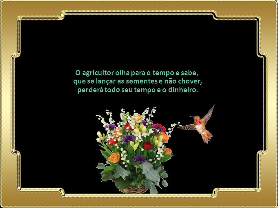 02.05.11 O agricultor olha para o tempo e sabe, que se lançar as sementes e não chover, perderá todo seu tempo e o dinheiro.