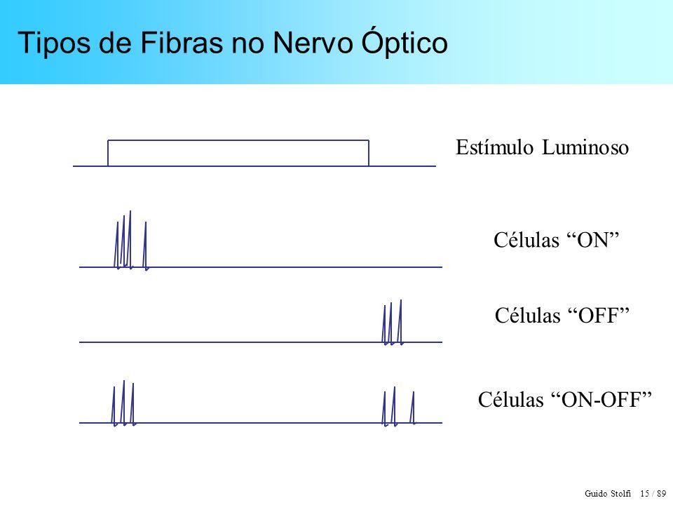 Guido Stolfi 16 / 89 Exemplo de Processamento Neuronal t 1 Gânglio Bipolar Neurônio Estímulo Sinapse Ativa Sinapse Inibidora Axônio