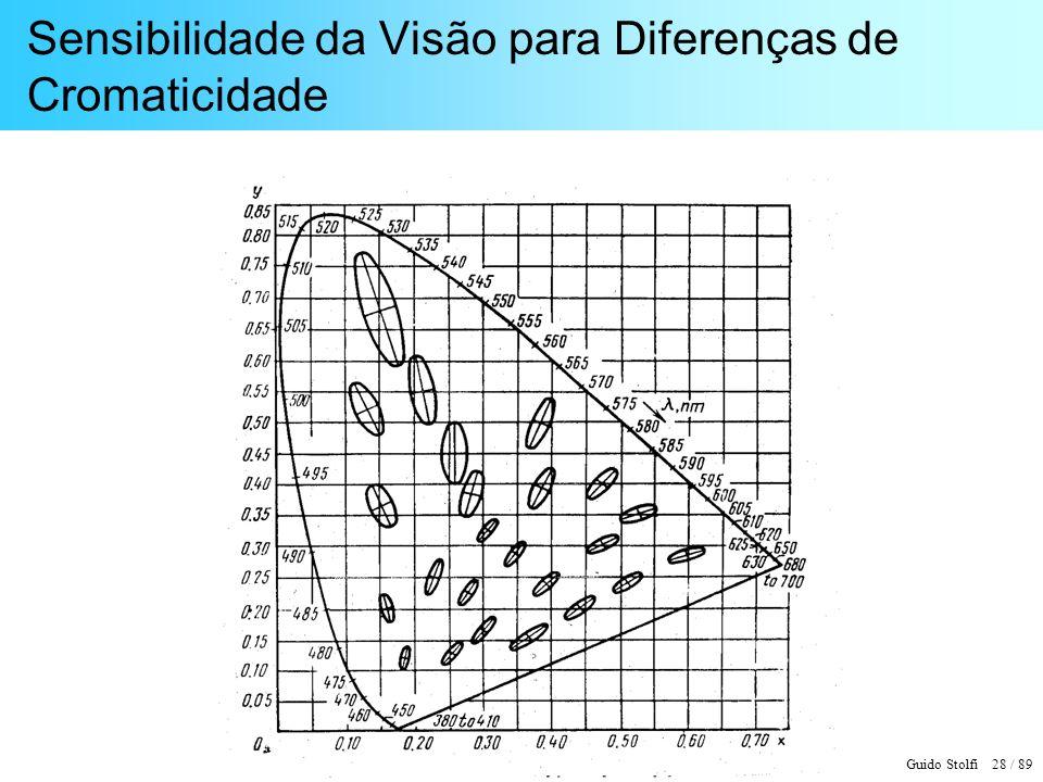 Guido Stolfi 29 / 89 Mecanismo de Construção da Visão