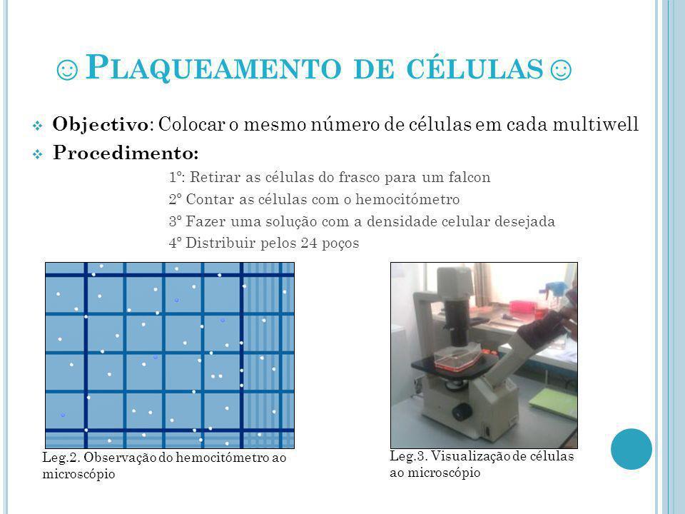 TRANSFECÇÃO * Objectivo : Introduzir um plasmídeo para expressar algo ( no nosso caso, proteína GFP) * Procedimento : 1º Preparar os complexos de lipossomas+folatos+DNA 2º Distribuir os complexos pelos poços e aguardar 4 horas 3º Mudar o meio celular para o mesmo não se tornar tóxico Leg.4: Introdução de lipossomas nas células Leg.5 : Troca de meio às células