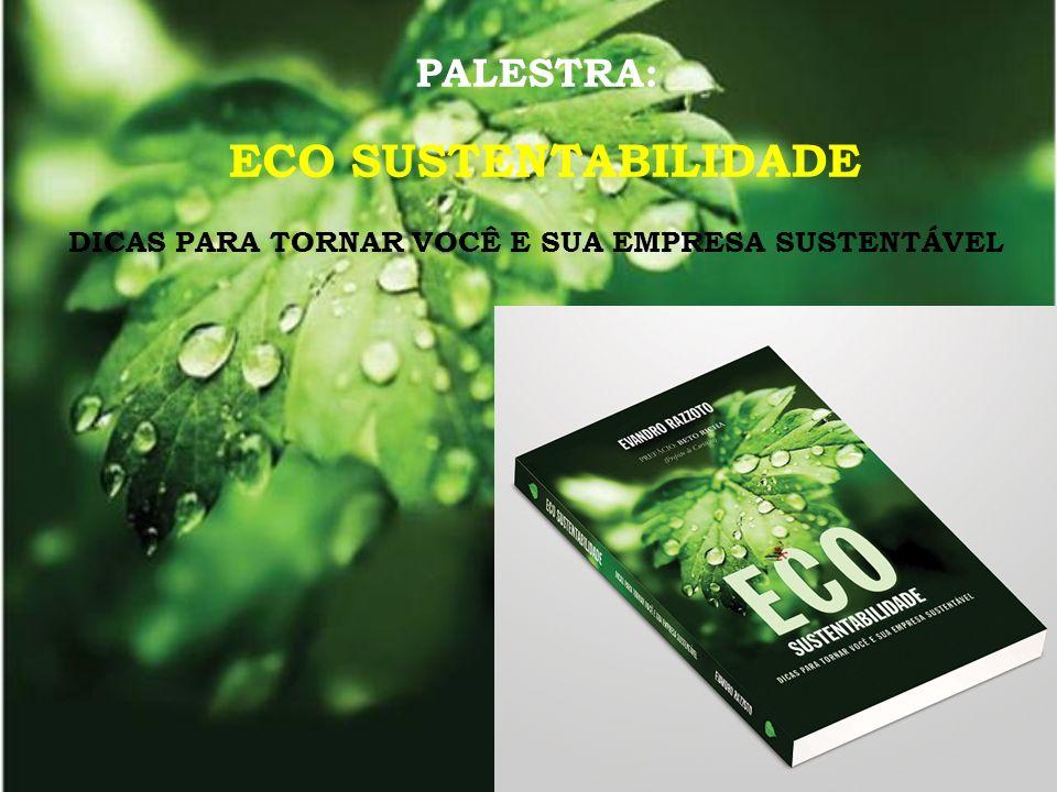 MODELO DE CRESCIMENTO ECONÔMICO DESEQUILÍBRIOS crescimento da miséria, da poluição e da degradação do meio ambiente.