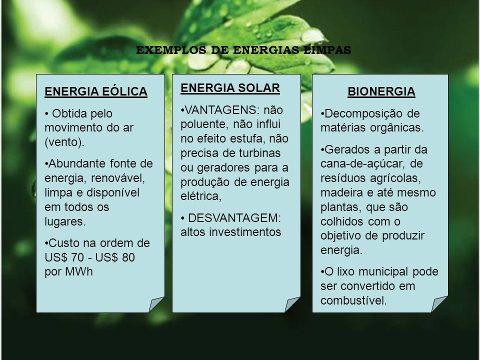 PROMOVER A CULTURA DA SUSTENTABILIDADE Re-educação ambiental e social, a postura da empresa e de seus colaboradores.
