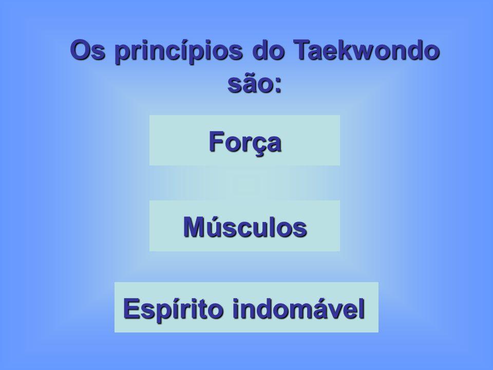 Os princípios do Taekwondo são: Força Músculos Espírito indomável Espírito indomável