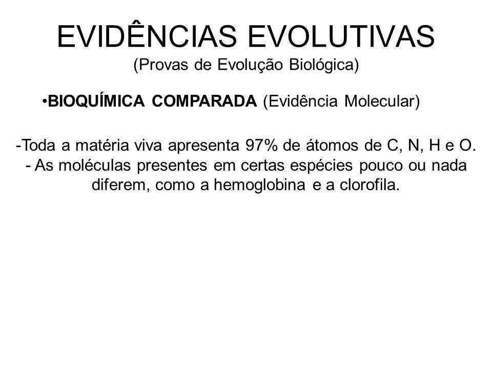 EVIDÊNCIAS EVOLUTIVAS (Provas de Evolução Biológica) BIOQUÍMICA COMPARADA (Evidência Molecular) -Toda a matéria viva apresenta 97% de átomos de C, N, H e O.