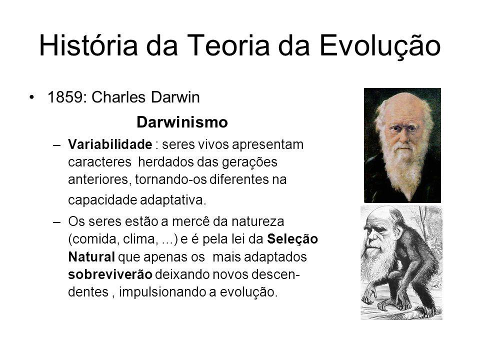 História da Teoria da Evolução 1859: Charles Darwin Darwinismo –Variabilidade : seres vivos apresentam caracteres herdados das gerações anteriores, tornando-os diferentes na capacidade adaptativa.