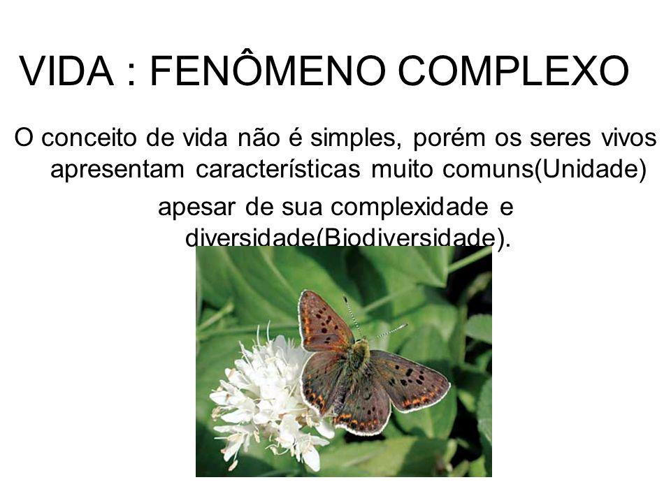VIDA : FENÔMENO COMPLEXO O conceito de vida não é simples, porém os seres vivos apresentam características muito comuns(Unidade) apesar de sua complexidade e diversidade(Biodiversidade).