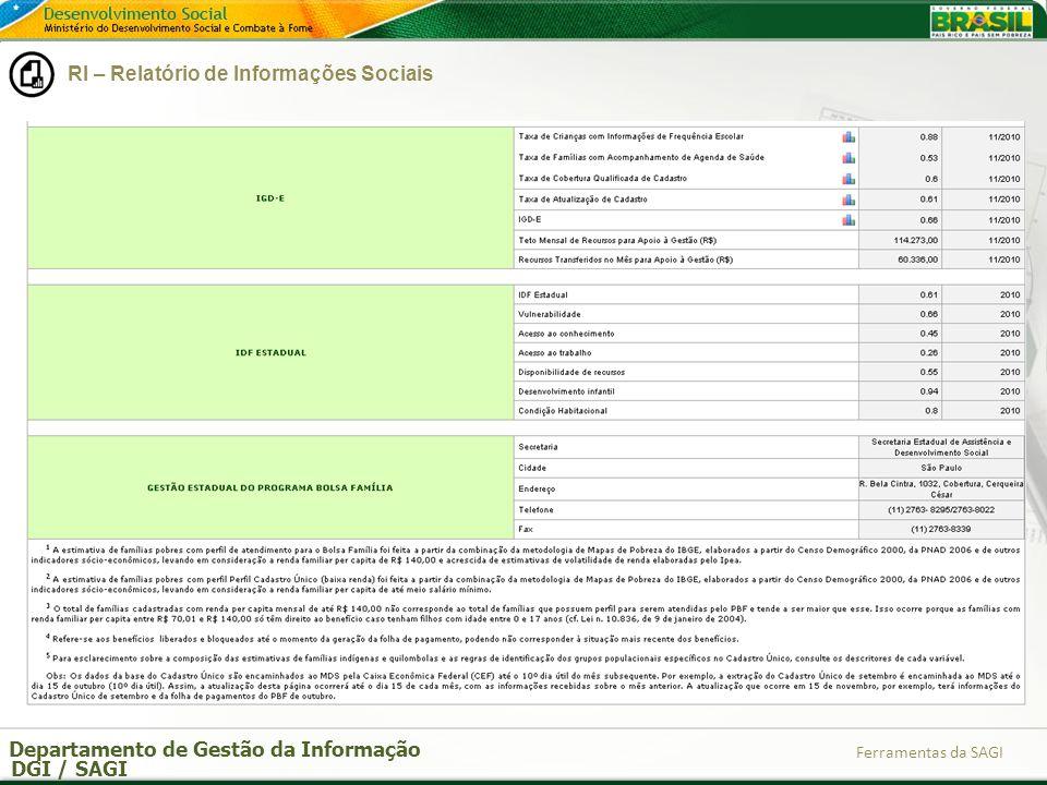 Departamento de Gestão da Informação DGI / SAGI Ferramentas da SAGI RI – Relatório de Informações Sociais